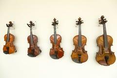 violinos Foto de Stock Royalty Free