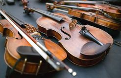 Violinos Fotos de Stock