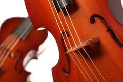 Violinos isolados no branco Imagem de Stock Royalty Free