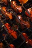Violinos na parede Foto de Stock