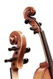 Violinos no branco imagens de stock royalty free