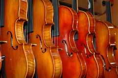 Violins. A display of beautiful violins just itching to play a tune Royalty Free Stock Images