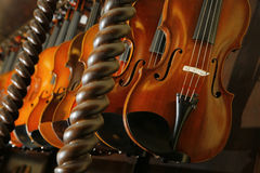 Violins in a shop of a violin maker Stock Image