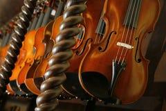 Violins in a shop of a violin maker Stock Image