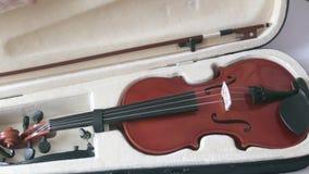 ViolinViolin en una caja negra con un sistema completo del puente y del arco del cuello en un caso con un cuello tiende un puente almacen de video
