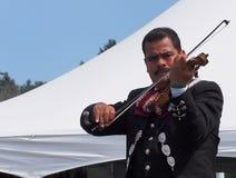 Violist In Mariachi Band stock afbeeldingen