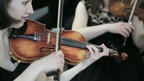 Violisten die muziek spelen Sluit omhoog stock videobeelden