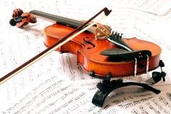 violon Photo libre de droits