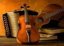 Violon acoustique d'ukulélé de guitare d'instruments de musique Images stock