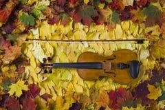 Violon contre le contexte du feuillage d'automne Photographie stock libre de droits