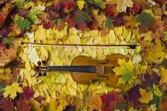 Violon contre le contexte du feuillage d'automne Images stock