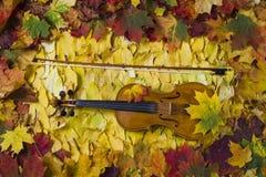Violon contre le contexte du feuillage d'automne Photo libre de droits
