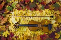 Violon contre le contexte du feuillage d'automne Photographie stock