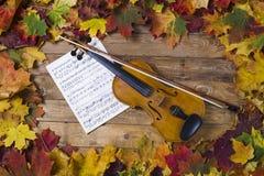 Violon contre le contexte du feuillage d'automne Photos stock