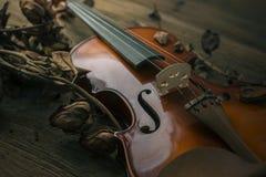 Violon dans le style de vintage sur le fond en bois Photos stock