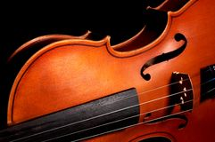 Violon de cru Photo stock
