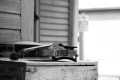 Violon de vintage Images stock