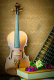Violon de vintage Images stock