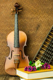 Violon de vintage Photo stock
