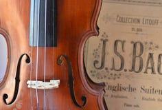 Violon et notes antiques allemands Photo libre de droits