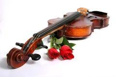 Violon et roses rouges Images libres de droits