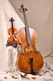 Violon et violoncelle Images libres de droits