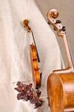 Violon et violoncelle sur le fond beige Photo stock