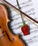 Violon, rose et musique Image libre de droits