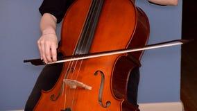 Violoncelista que joga o violoncelo Imagem de Stock