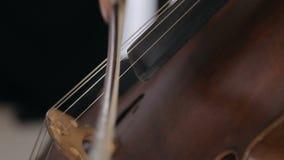 Violoncelista que juega música clásica en el violoncelo almacen de video