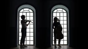 Violoncelista y violinista que juegan una composición musical Silueta almacen de metraje de vídeo