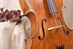 Violoncelle Photographie stock