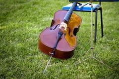 Violoncelle en parc d'automne Photographie stock