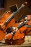 Violonceller och basfiol som ligger på golvet Arkivbilder