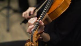 Violoncellist het spelen in het orkest op stadiumserre Sluit omhoog stock video