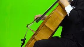 Violoncellmusikinstrumentslut upp grön skärm Slapp fokus arkivfilmer