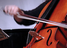 Violoncello. A playing violoncello Stock Photography
