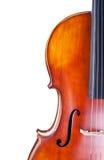 Violoncello immagine stock
