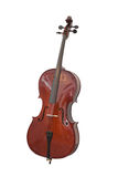 Violoncello. Isolated under the white background stock photography
