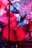 Violoncello. In nightclub,blur in moving stock photo