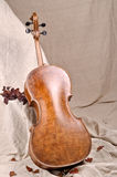 Violoncello back Royalty Free Stock Images