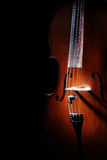 Violoncello  cello Stock Photography