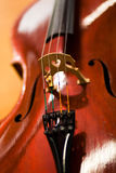 Violoncello Stock Images