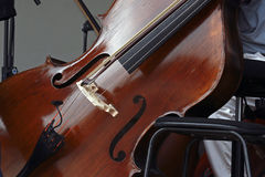 Violoncello Stock Photos