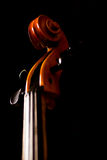 Violoncello detail Stock Photography