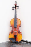 Violoncello. The image of a violoncello stock images