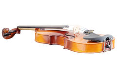 Violoncello. Isolated under the white background stock images