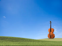 Violoncello isolated with wihte Stock Photography