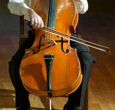 Violoncello musician. Boy playing her violoncello at the concert stock photo