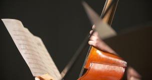 Violoncello in orchestra Musicista che gioca violoncello stock footage